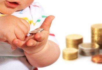 Балалар жәрдемақысының тек балаларға арналған тауарлардың сатып алынуы заңмен қадағаланады
