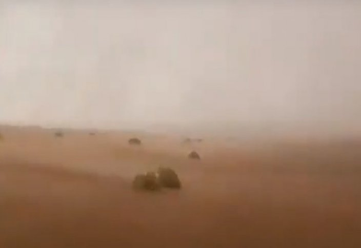 Арабтар ерледі: шөл далаға жасанды жаңбыр жаудырып жатыр (видео)