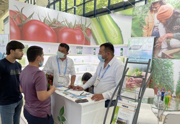 Разные: В Узбекистане запускают теплицы пятого поколения