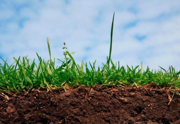 10 жылда қосымша 50 млн гектар жайылымдық жер айналымға тартылады