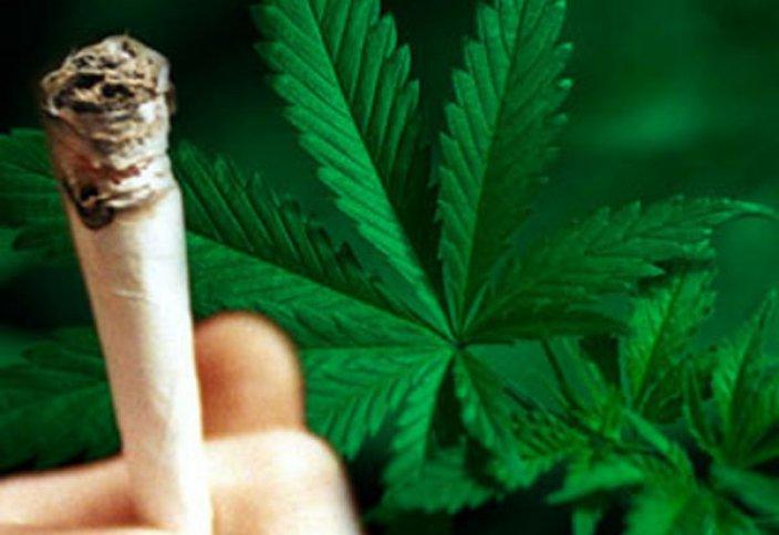 Легализация наркотиков в Египте – дебаты полным ходом