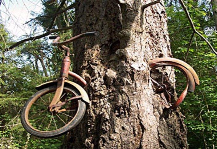 100 жылдық велосипед!