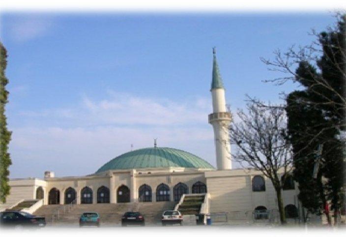 Новая поправка об исламе в австрийском законодательстве