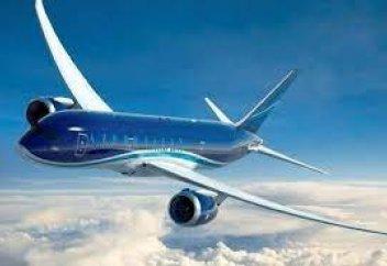 Самолеты станут экологичнее, если будут летать точно по ветру. Выяснилось, как птицы летают при ветре: это поможет разработать новые самолеты