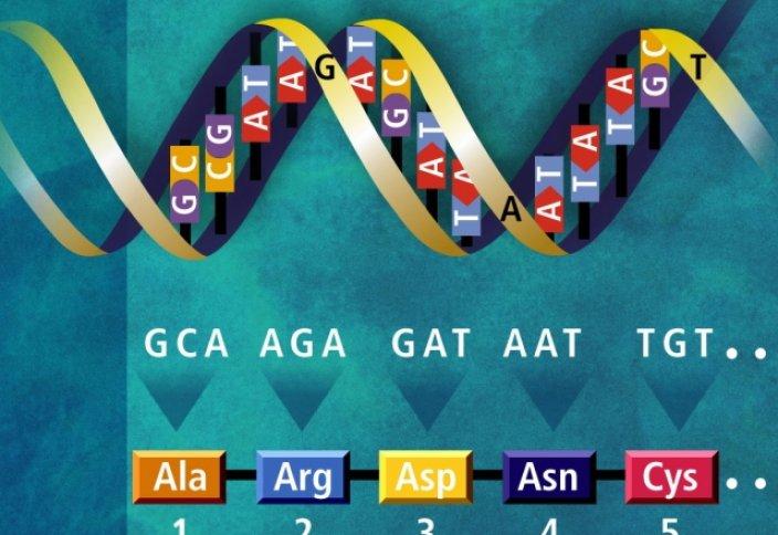 Bloomberg: корпорации не должны получить право на патентование наших генов