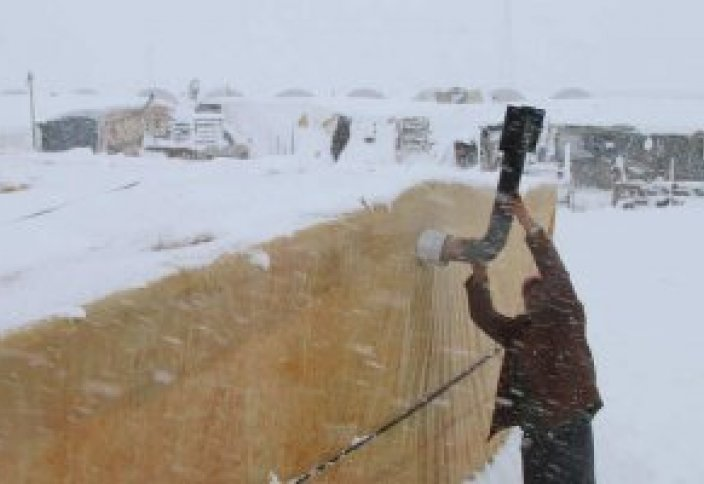 Сирийских беженцев настигла суровая зима