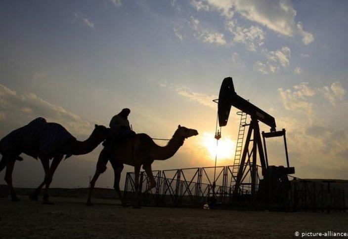 Араб елінің мұнай қоры 20 пайызға артты