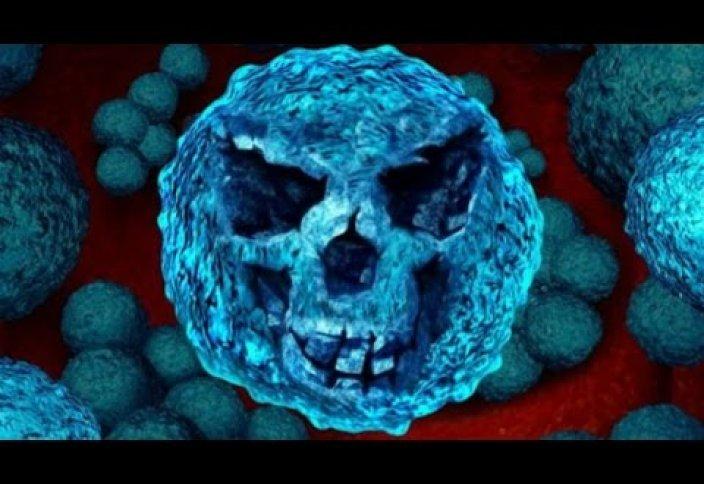 Супербактерии-убийцы стремительно размножаются из-за самолечения антибиотиками