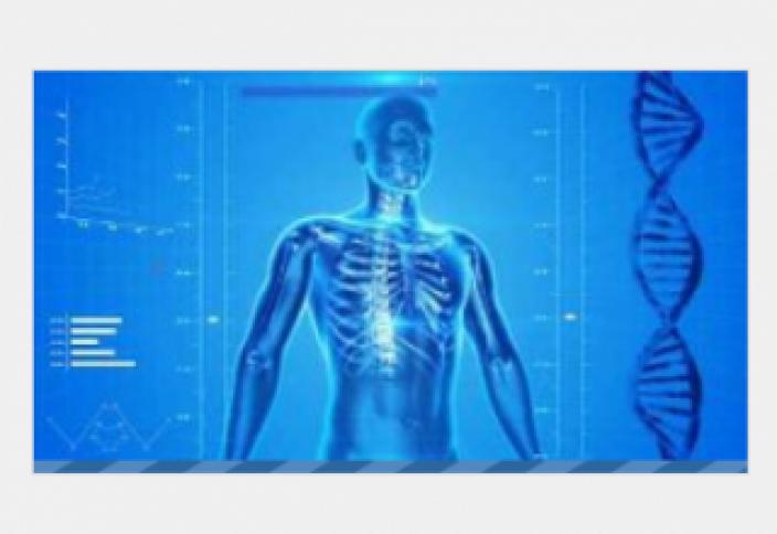Интересные факты о человеческом организме