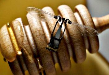 Араларды алмастыратын робот аралар жасалды (видео)