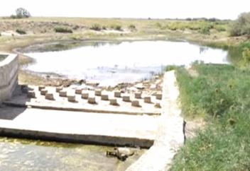 В Казахстане исчезает одна из самых длинных рек страны (фото)