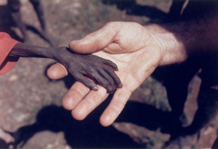 Помощь жителям Африки в Священный месяц