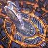 В Дубае построят небоскреб на отпечатке пальца правителя эмират