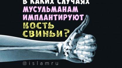 В каких случаях мусульманам имплантируют кость свиньи?