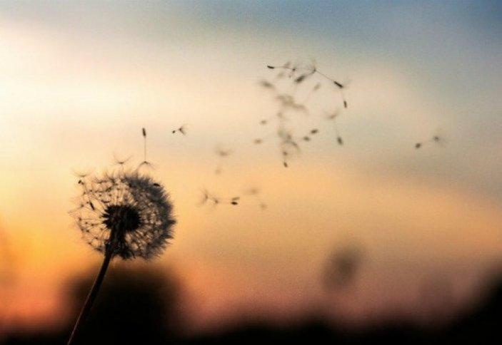 Разве ЭТО смысл жизни? | Ислам Sound