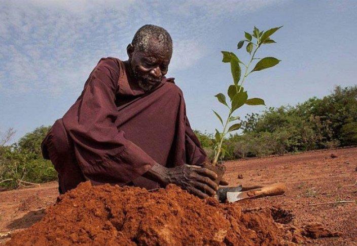 Африканы гүлдендірген аңыз адам