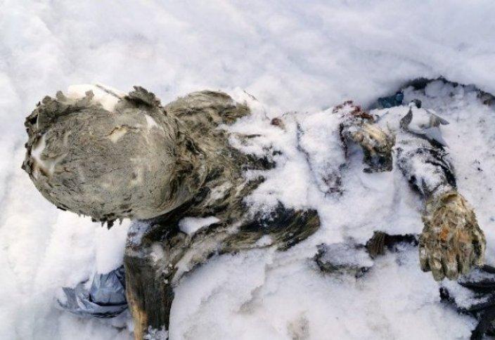 Таудың ұшар басынан 55 жыл бұрын жоғалған альпинистердің сүйегі табылды (фото, видео)