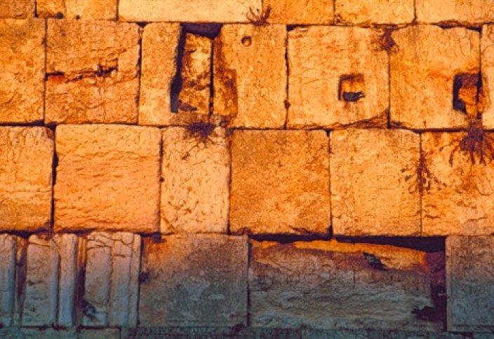 Спор у Стены Плача стал причиной убийства и пожизненного заключения