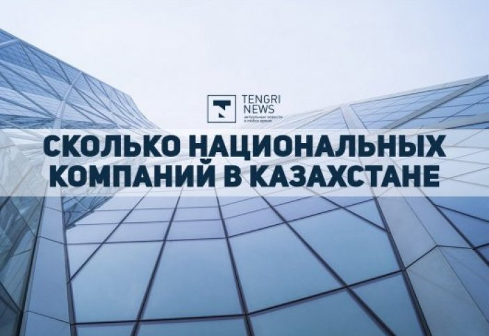 Сколько национальных компаний в Казахстане. Инфографика