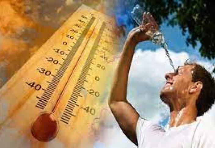 Жаһандық жылыну: адам организмі қанша температураға дейін төзе алады?