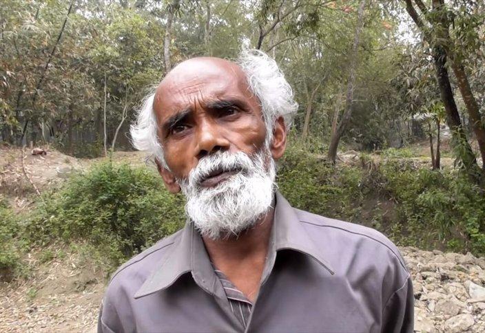 История человека, который каждый день сажал по одному дереву