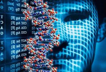 Найден способ избавиться от генетической предрасположенности к ожирению