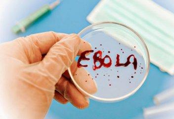 В ДРК число погибших из-за вируса Эболы превысило 1200 человек