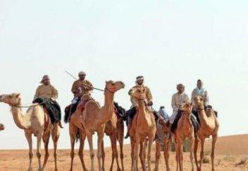 Жителям ОАЭ предлагают пересечь пустыню на верблюдах
