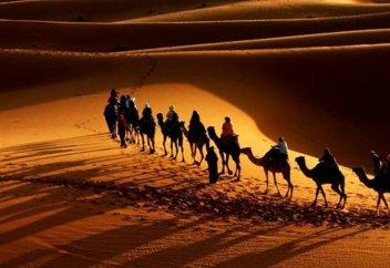 Сподвижник Усама ибн Зайд