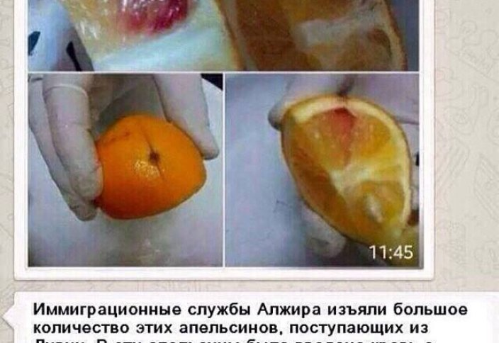Зараженные апельсины из Ливии? Комментарии Минсельхоза РК