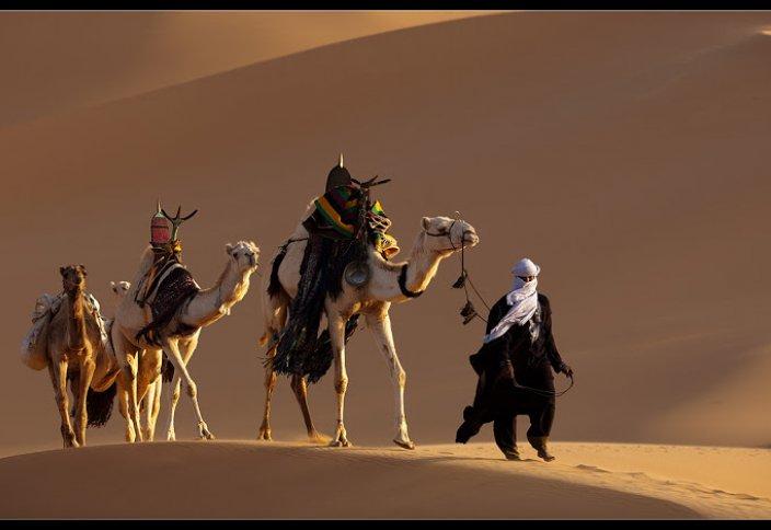 Мусульманские государства мира: Бахрейн. Объединённые Арабские Эмираты