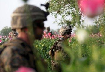 Куда ведёт афганский наркотрафик?