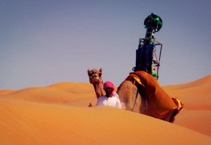 Верблюдицей проложен новый маршрут в Google Maps (видео)