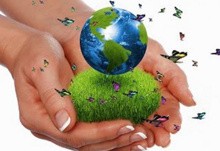 50-ден аса мемлекет өз аумағының 30%-ның экологиясын қорғауға міндеттеме алды