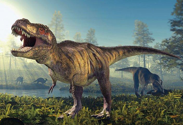 """""""Құранда барлық нәрсе айтылған"""" дейді. Динозавр туралы мәлімет бар ма?"""