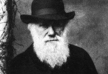 Әлемде осымен екінші ел Дарвиннің теориясын мектеп оқулығынан алып тастады