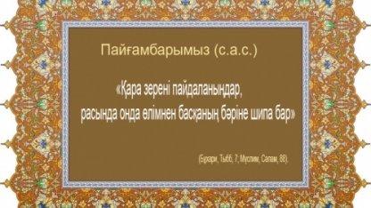 Қара зере – сан түрлі дертке дауа (масло черного тмина)