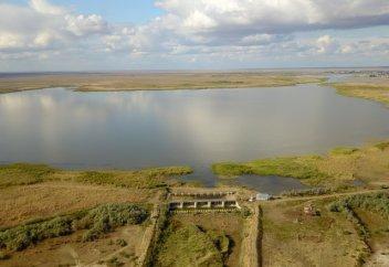 Спасти Шалкар. Что происходит с озером в Актюбинской области